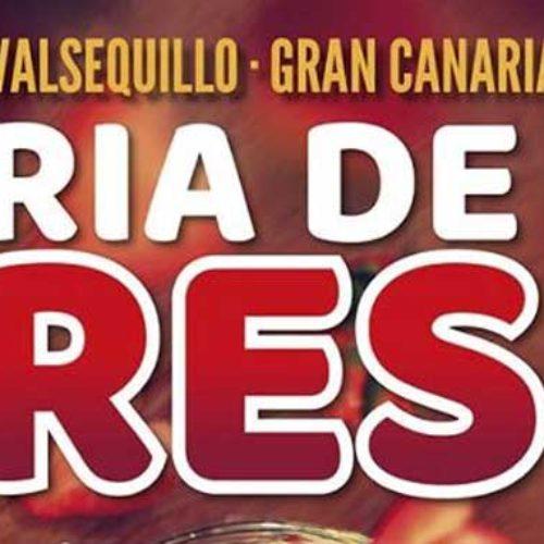 Helgeguide – Gran Canaria – 27.-29. april