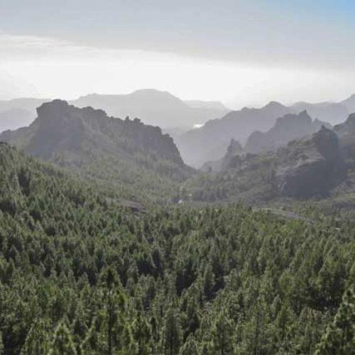 Vurderer å lage ny nasjonalpark