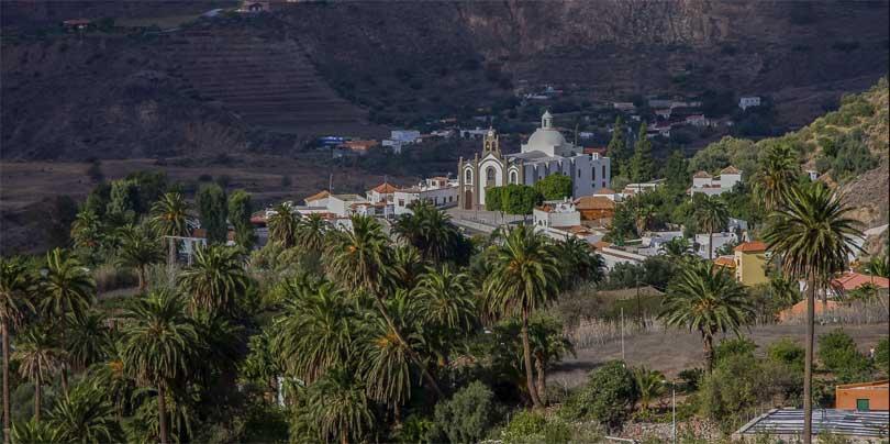 Santa Lucia palmer
