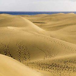 Skal berge sanddynene i Maspalomas