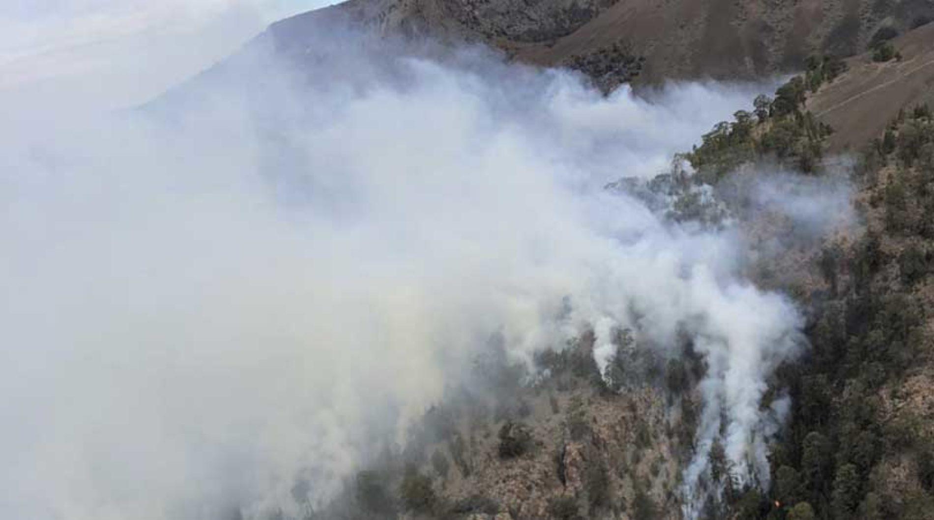 Skogbrann på Tenerife
