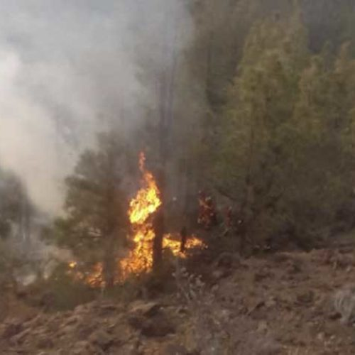 Skogbrann på Tenerife ennå ikke slukket – 120 mannskaper jobber på spreng