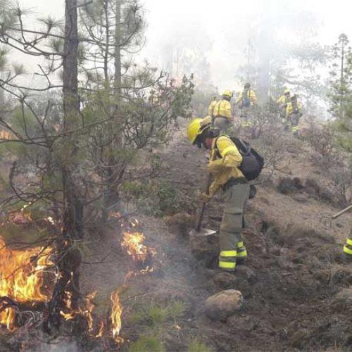 Fortsetter å kjempe mot skogbrannen på Tenerife
